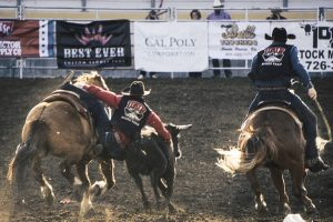 A Beginners Guide to the Extreme Sport of Rodeo