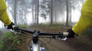 mountain bike gloves nature