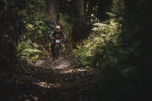 mountain bike deep forest