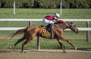 racehorse jockey