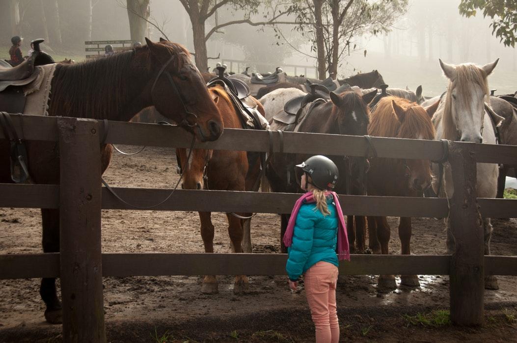 horse racing kid