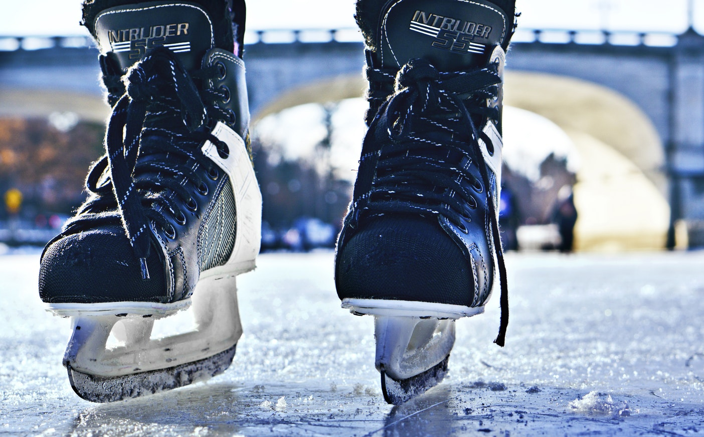 hockey skaters