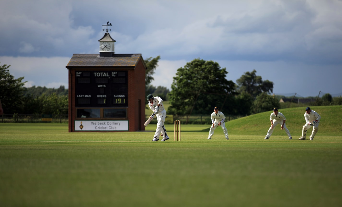 cricket man playing